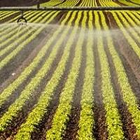 Tarım Sulama Sistemleri